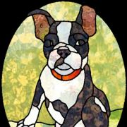 3bostonterrier_btn